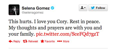 Friends of Cory Monteith React to His Death - 29Secrets