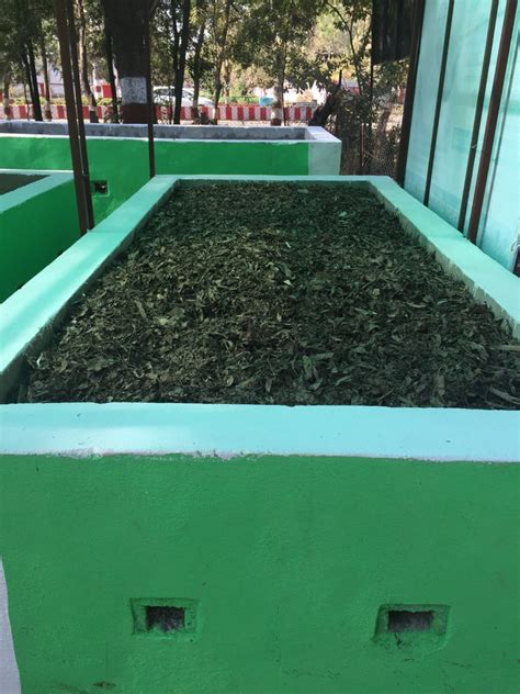 SBS Language | 'Make bio compost from waste flowers and