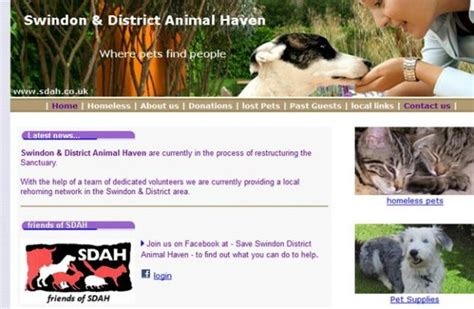 Dog Rescue Organisations - Find a local dog rescue group