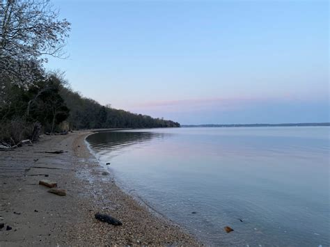 Purse State Park 4-5-21 - Fossil Hunting Trips - The