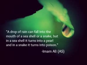 Imam Ali Quotes About Love
