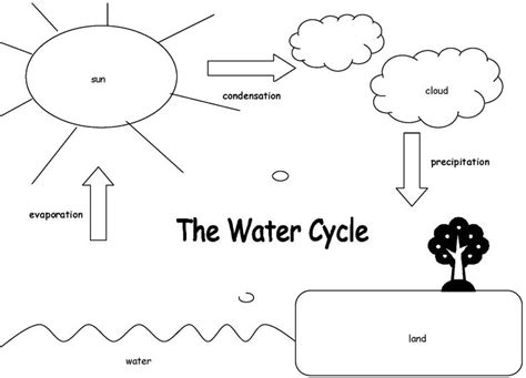 45 best images about HS cycle on Pinterest | Life cycles