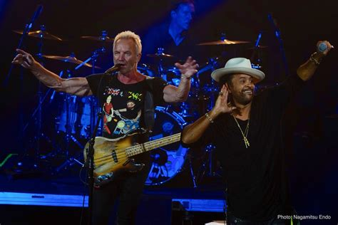 Sting & Shaggy Concert Footage to Debut in NHK and Sony's