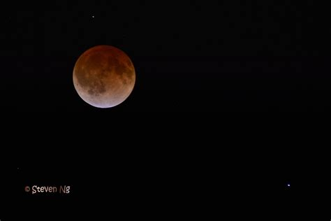 Blood Moon 2014 (with Mars) | I stay out late to check out