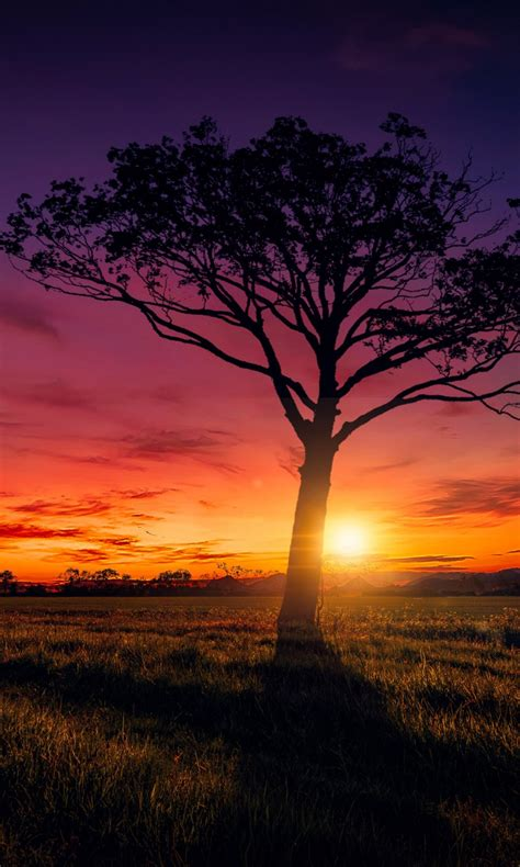 Sunset Scenery Wallpapers | HD Wallpapers | ID #20047