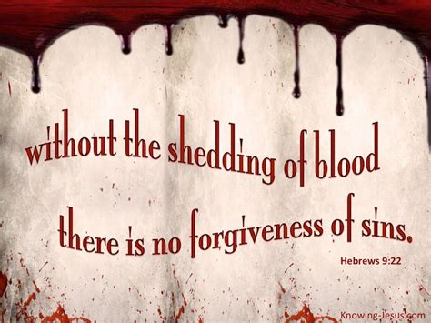 Hebrews 9:22 No Forgiveness Without The Shedding of Blood